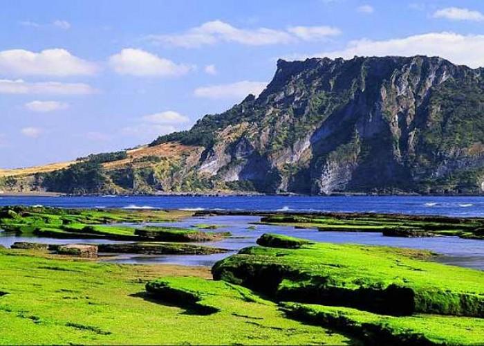 Đảo Jeju Hàn Quốc