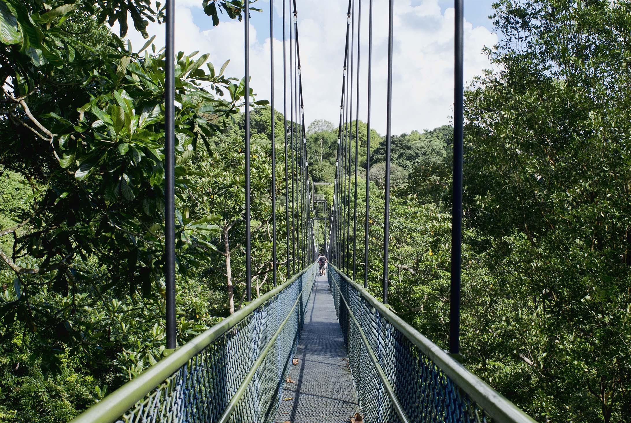 Cầu Alkaff