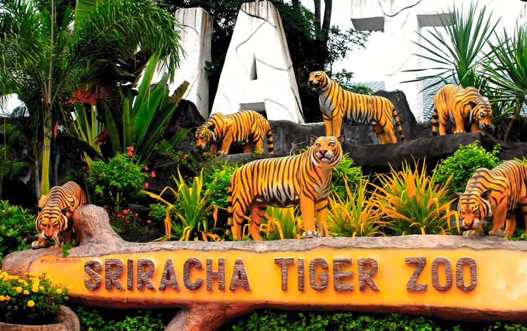 trại hổ